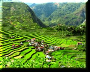 banaue-rice-terraces-nature